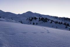 Voies dans la neige Image libre de droits