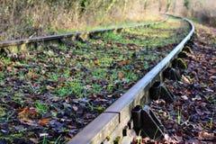 Voies de chemin de fer abandonnées dans la forêt Photographie stock libre de droits