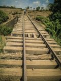 Voies de chemin de fer et voyage en train dans le paysage africain typique photos libres de droits