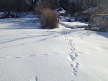 Voies de neige Image stock