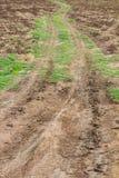 Voies de roue de la terre agricole Photo stock
