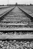 Voies de train chez Auscwitz-Birkenau, Pologne Photos stock