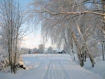 Voies neigeuses simples de pneu - portrait photos stock