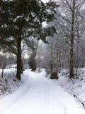 Voies neigeuses simples de pneu - portrait Image libre de droits