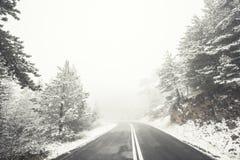 Voies neigeuses simples de pneu - portrait Photographie stock libre de droits