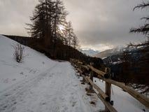 Voies neigeuses simples de pneu - portrait Chamois, Italie photographie stock libre de droits