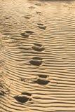Voies profondes sur le sable cannelé photographie stock