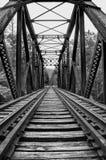 Voies sur le pont en train Image stock
