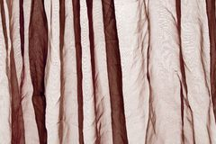 Voile curtain brown Stock Photos