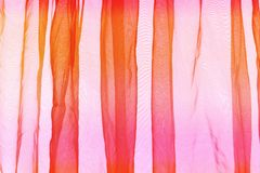 Voile curtain orange pink Royalty Free Stock Images