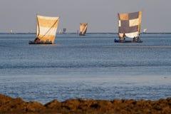 Voiles sur la mer Image stock