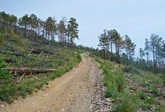 Voisinage de côte dans le kurma de canyon photos libres de droits