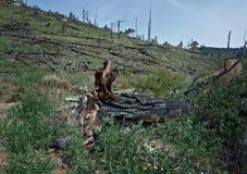 Voisinage de côte dans le kurma de canyon Images libres de droits