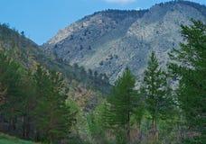 Voisinage de côte dans le kurma de canyon Image stock