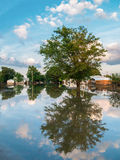 Voisinage inondé Photographie stock