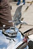 Voiture Alvis de vintage de mascotte Image libre de droits