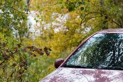 Voiture dans la forêt d'automne photos stock