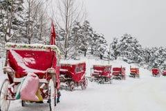 Voiture de cheval sous la neige Abant - Bolu - Turquie Photos libres de droits