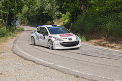 Voiture de course Peugeot 207 Image stock