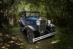 Voiture de Ford Model A sur le chemin forestier Photographie stock libre de droits