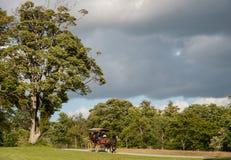 Voiture de Jaunting en parc national de Killarney Images stock