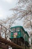 Voiture de pente passant le tunnel de fleurs de cerisier au parc de ruine de château de Funaoka, Shibata, Miyagi, Tohoku, Japon Photo libre de droits