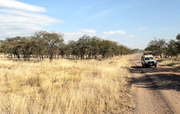Voiture de safaris Photos libres de droits