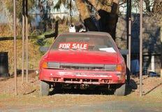 Voiture de sport utilisée à vendre et l'animal familier photos libres de droits