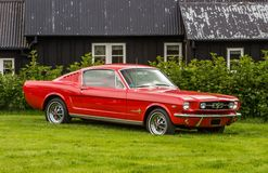 Voiture deux-volumes 1965 de mustang de Ford Photos libres de droits