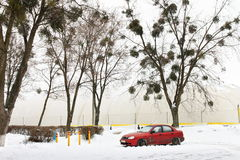 Voiture rouge dans la neige près du terrain de jeu d'intérieur Photos libres de droits