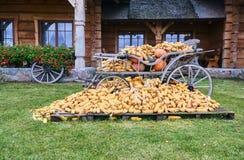 voiture rurale chargée avec des épis de maïs images stock