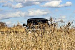 Voiture sur un fond de ciel bleu et de nuages dans le domaine d'automne photographie stock
