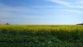 Vojvodina di Colorfull Fotografia Stock Libera da Diritti