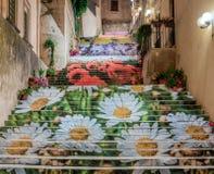 Volée d'escalier en fleur Images stock