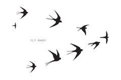 Volée d'hirondelle de silhouette d'oiseaux Images libres de droits