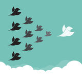 Volée des oiseaux volant dans le ciel, Photographie stock