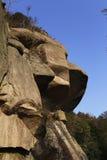 Volée des roches énormes avec la diverse croissance d'arbre Image libre de droits