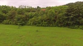 Vol à côté des maisons de forêt dans la distance banque de vidéos