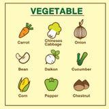 VOL. овоща установленный 1 Иллюстрация штока