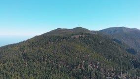 Vol aérien au-dessus de parc national de Teide, de plate-forme d'observation, de forêt conifére et d'océan clips vidéos