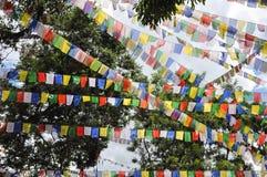 Vol accrochant d'american national standard vu par drapeaux de prière dans un secteur accidenté au Népal photographie stock libre de droits