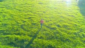 Vol au-dessus de l'homme sportif courant au pré rural parfait d'herbe verte tous terrains Coucher du soleil en montagne clips vidéos