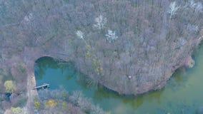 Vol au-dessus de la rivière dans la forêt près du champ banque de vidéos