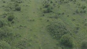Vol au-dessus de la route de campagne avec l'appareil-photo se levant à l'horizon La vidéo est tirée sur l'air 100mvps 4k de Mavi banque de vidéos