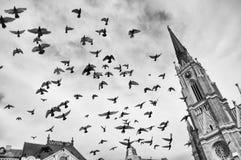 Vol au-dessus de place de liberté photographie stock