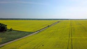 Vol au-dessus des champs agricoles banque de vidéos