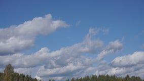 Vol au-dessus des nuages, animation boucle-capable clips vidéos
