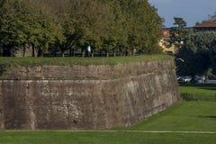 Vol blanc d'oiseau près des murs de Lucques, Toscane, Italie image libre de droits
