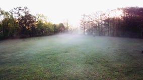 Vol brumeux de bourdon de matin au-dessus d'une ferme en Caroline du Nord banque de vidéos