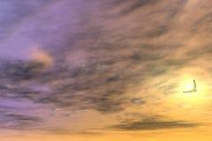 Vol d'aigle dans Sun Images libres de droits